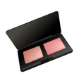 makeup cosmetics rouge blusher in box icon vector image vector image