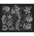 Hand drawn sketch jellyfish starfish scallop vector image