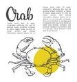 sketch contour crab vector image