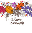 Colorful Autumn Leaves Concept vector image
