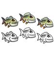 angry cartoon piranha vector image