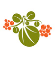 Single simple green leaf with orange seeds vector image vector image