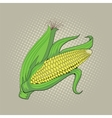 Ear of corn pop art retro vector image