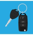 Car Key and of the alarm system vector image