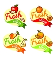 fresh juice emblem set vector image vector image