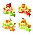 fresh juice emblem set vector image