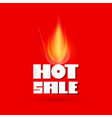 Hot Sale Title and Flame on Red Background vector image