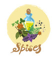 spices and flavours vector image