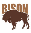 bison vector image vector image
