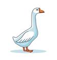 Hand drawn goose animal cartoon vector image