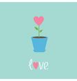 Heart flower in pot Love card vector image