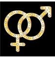 gold couple symbol vector image