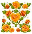 rose design elements vector image vector image