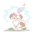 cute little dog in love vector image