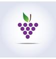 Grapes icon vector image