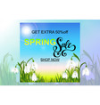 spring background with snowdrop flowers green vector image