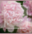peonies background for a card vector image