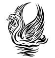 Swan bird vector image