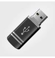 USB memory stick vector image