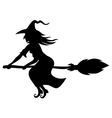 witch broom vector image