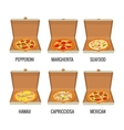 Set whole pizza in open white box Pepperoni vector image