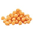Chickpeas Clipart vector image