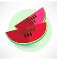 watermelon icon vecotr vector image