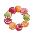 Frame made from fruits sketch for your design vector image vector image