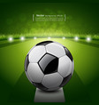 Soccer ball on green grass background vector image vector image