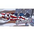 BASEBALL FLAG USA vector image vector image