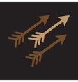 Modern flat icon with long shadow Indian arrows vector image