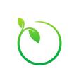 beauty green leaf nature eco logo vector image
