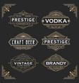vintage line frame design for labels vector image