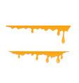 horizontal drops of honey vector image