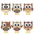 set of cute brown owls isolated on white vector image
