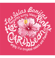 Caribbean island with hibiscus vector image vector image
