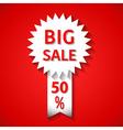 Icon big sale vector image vector image