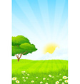 Green Grass with Tree Sun Clouds and Rays vector image vector image