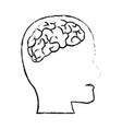 profile human head with brain anatomy vector image