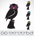 Owl and glasses vector image