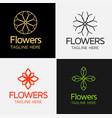 royal flower logo template vector image