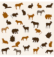 Animal seamless pattern vector image