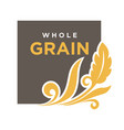 whole grainemblem ear of wheat ecology symbol vector image