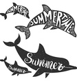 dolphins with lettering Summer time vector image