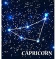 Symbol Capricorn Zodiac Sign vector image