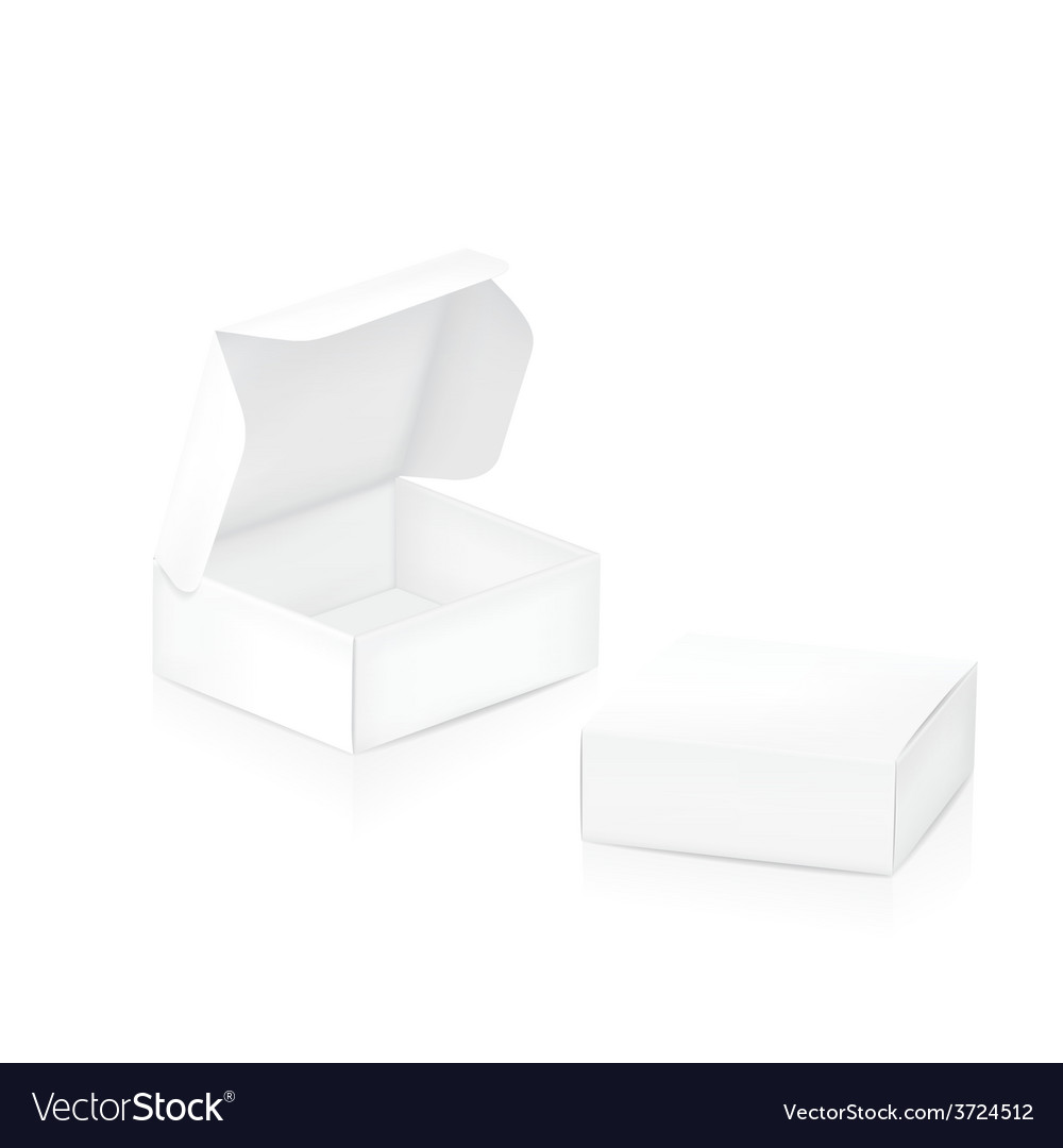 Empty package box two white packaging boxes vector