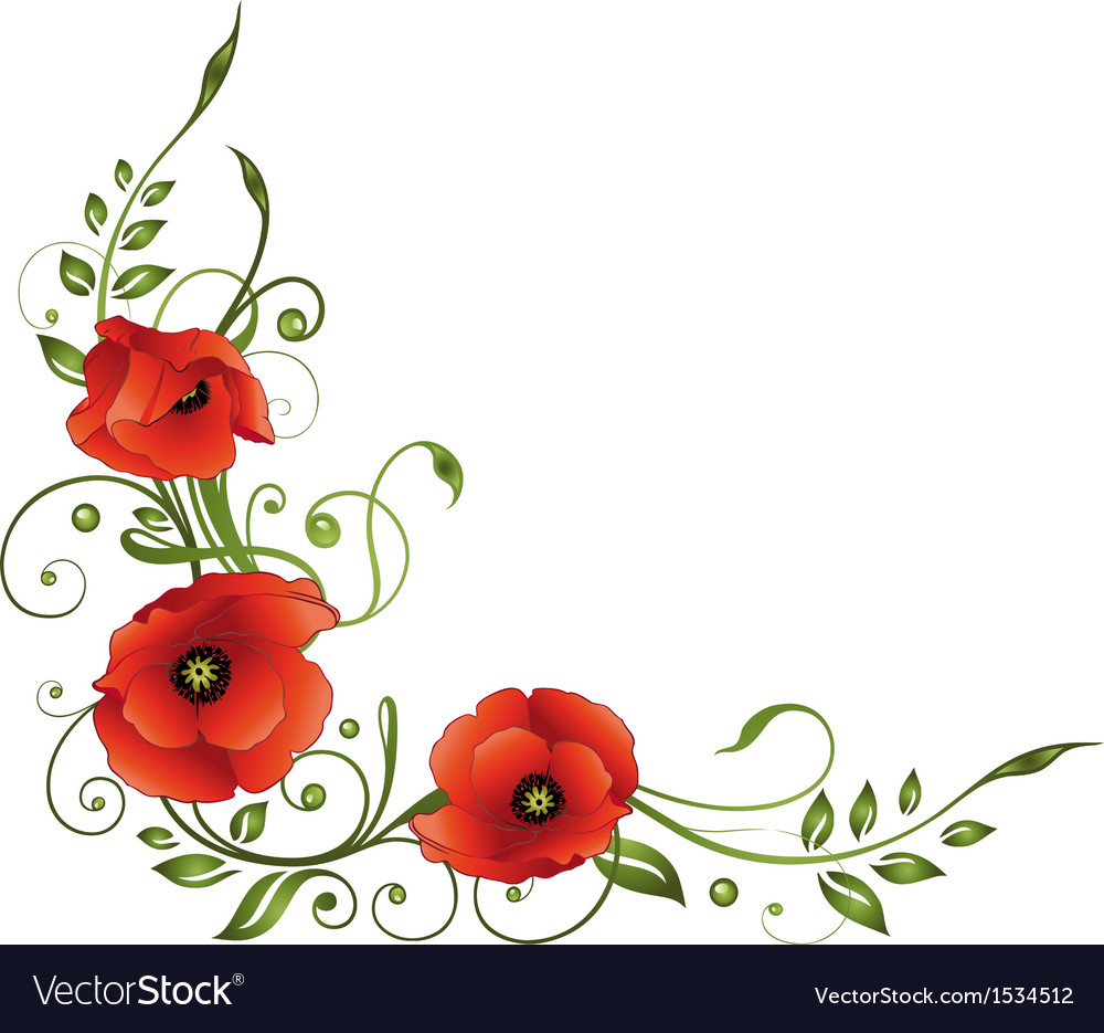 Poppies floral element border vector