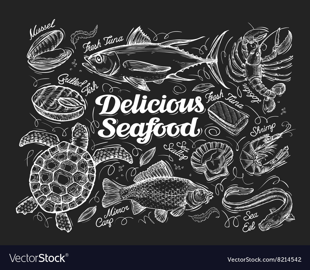 Delicious seafood hand drawn sketch of a fish vector