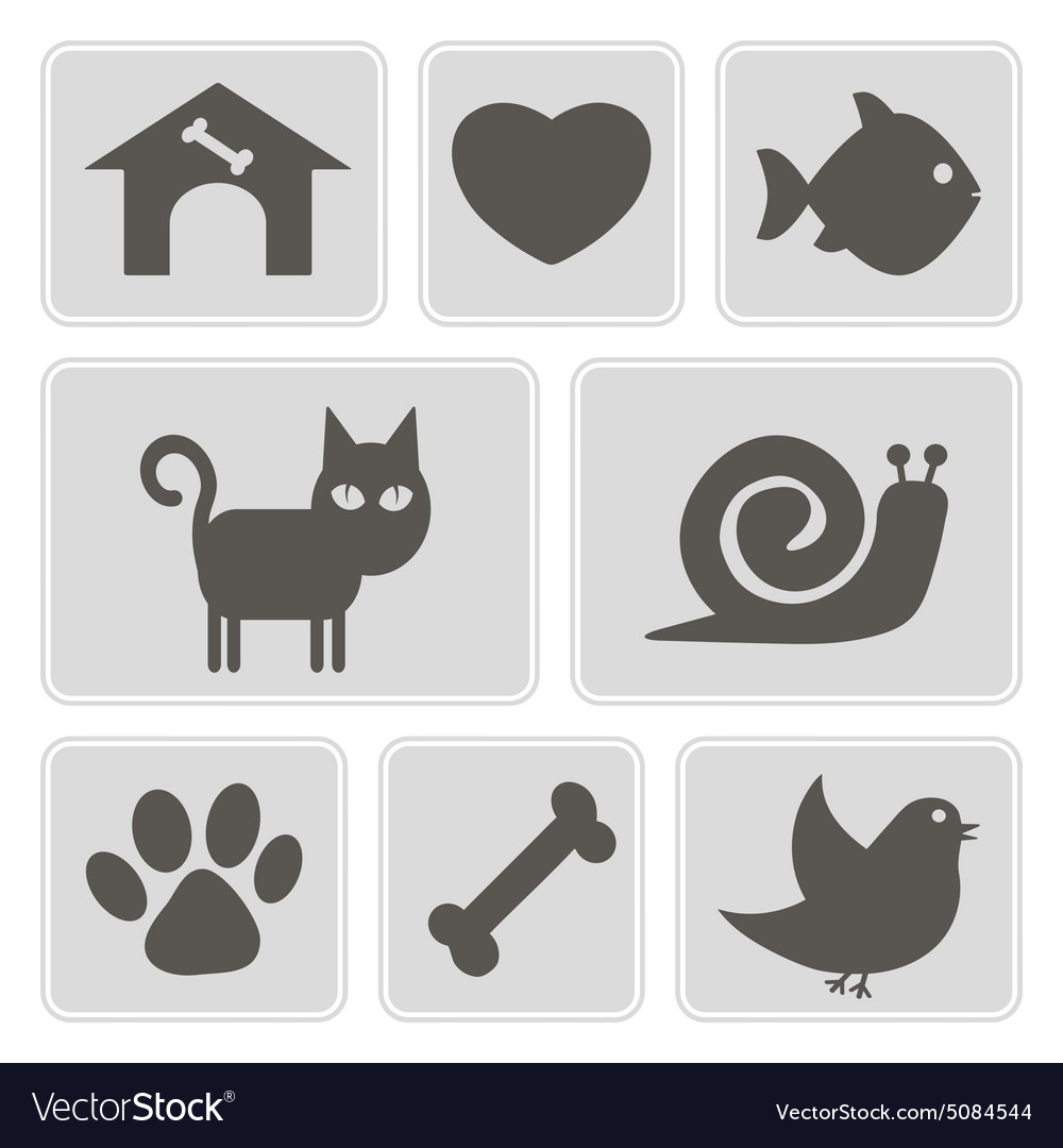 Monochrome icons with pets vector