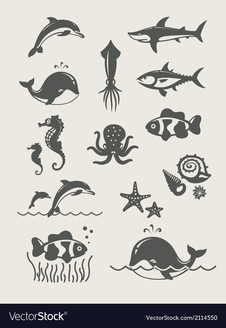 Ocean and sea fishes vector